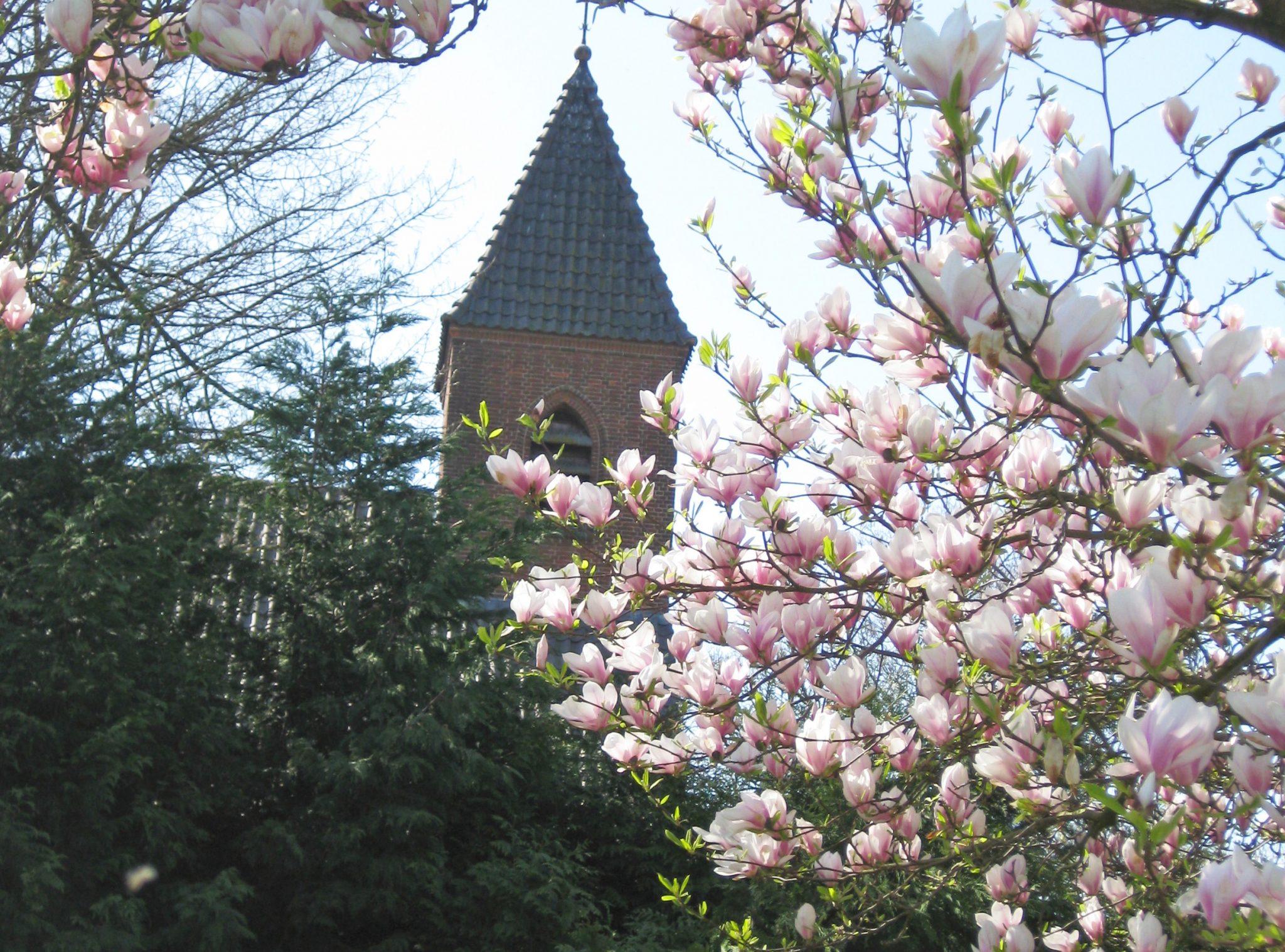 Hurns Kerkje - Muzikale Monumenten