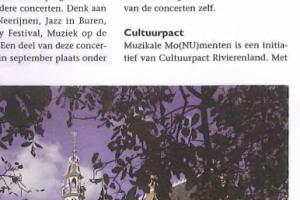 Gemeente Buren Magazine_2013 - Muzikale Monumenten
